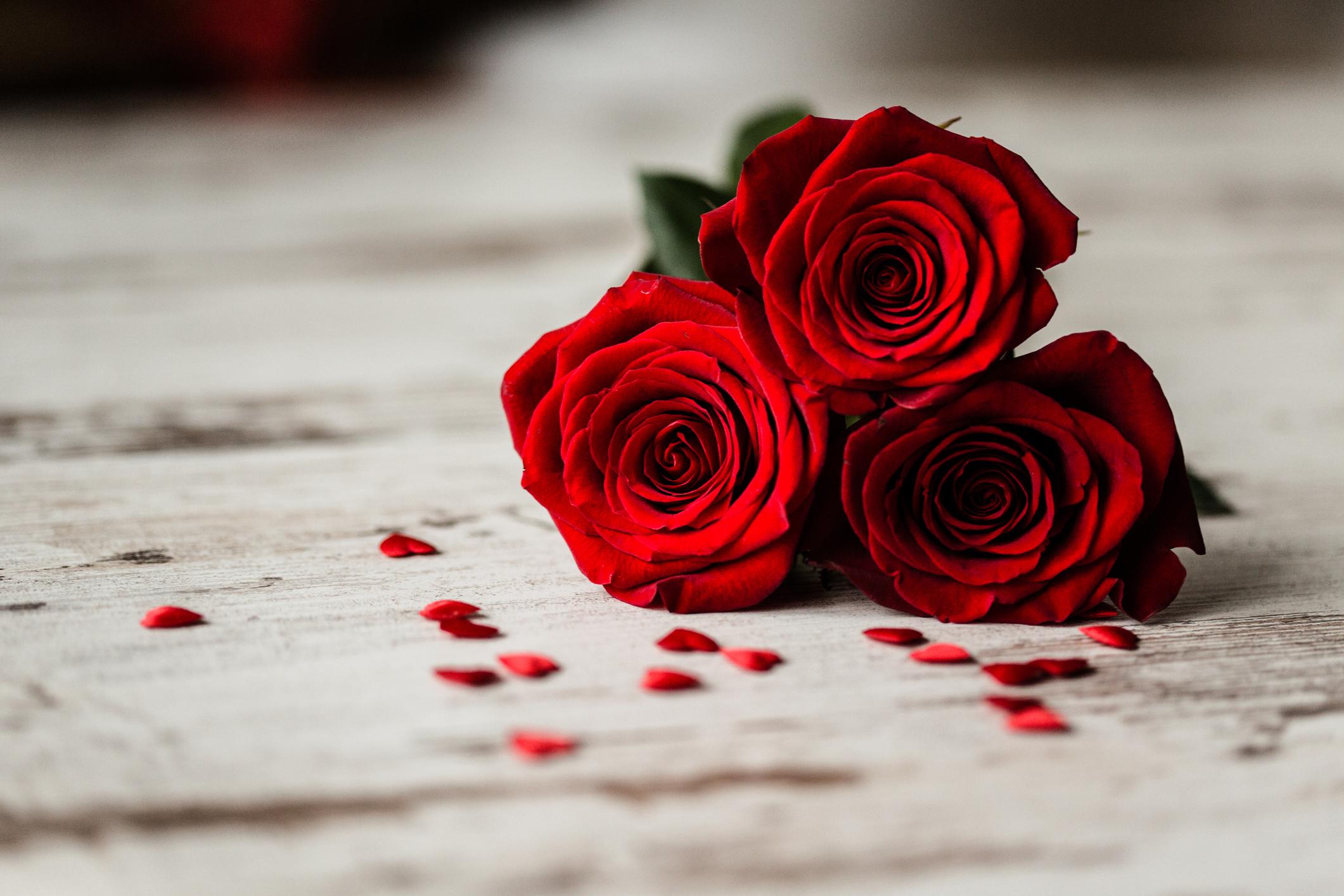 Valentines-1-1.jpg